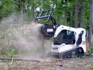 bobcat land clearing