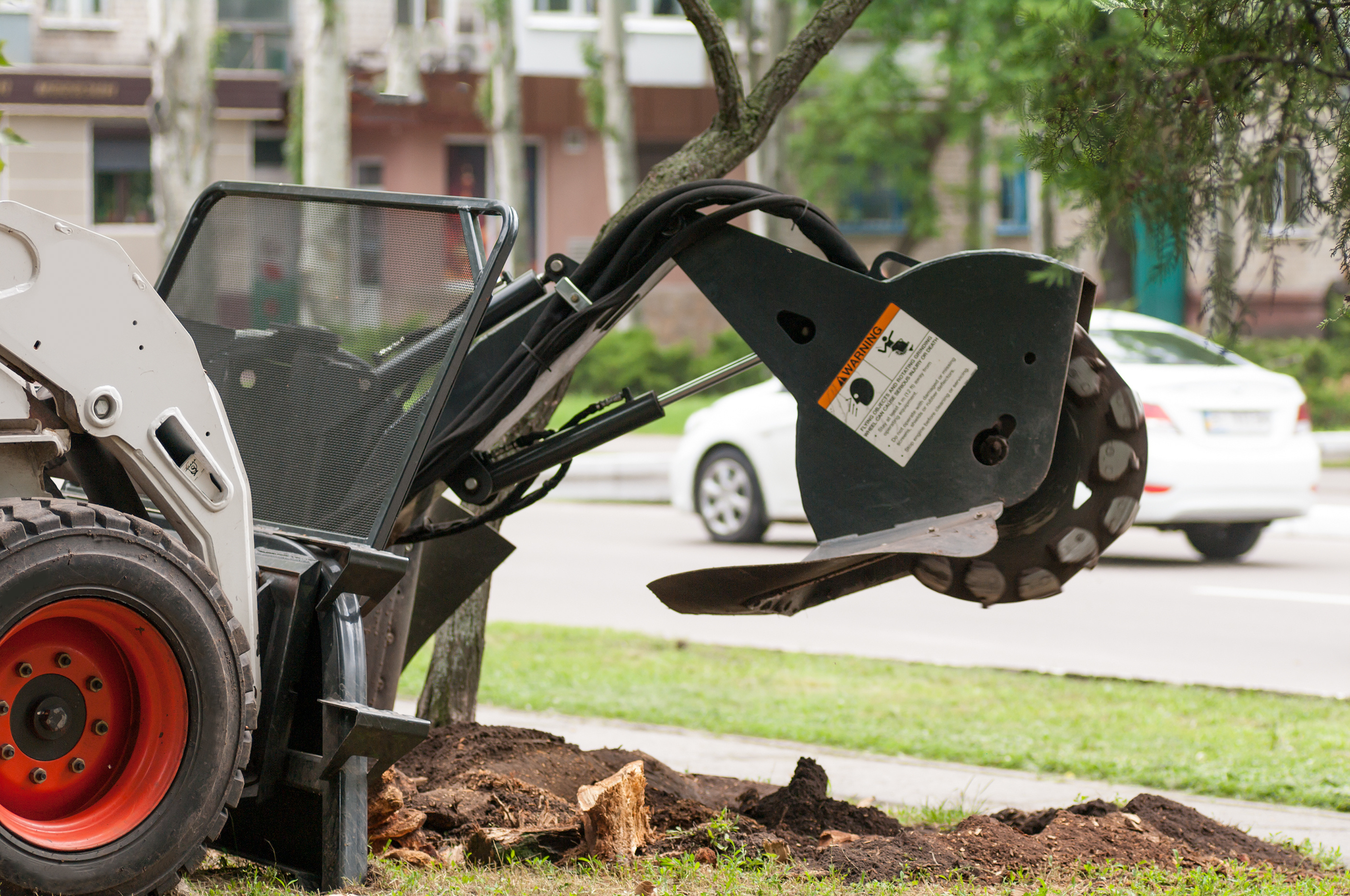 DON'T SETTLE – HIRE THE BEST TREE SERVICE IN ORLANDO