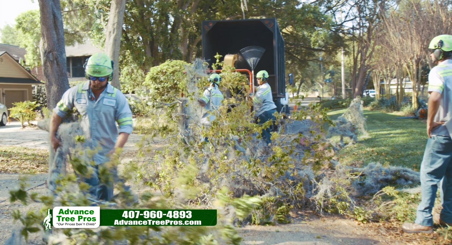 DEALING WITH DROUGHT – TIPS FROM AN ORLANDO TREE DOCTOR (ARBORIST)