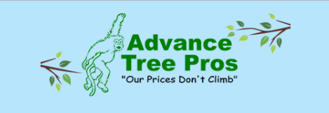 Advance Tree Pros
