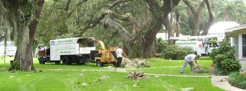 Grapple Truck Service in Orlando