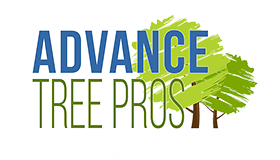 Advance Tree Pros